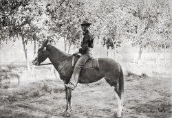 Horseman: 1900