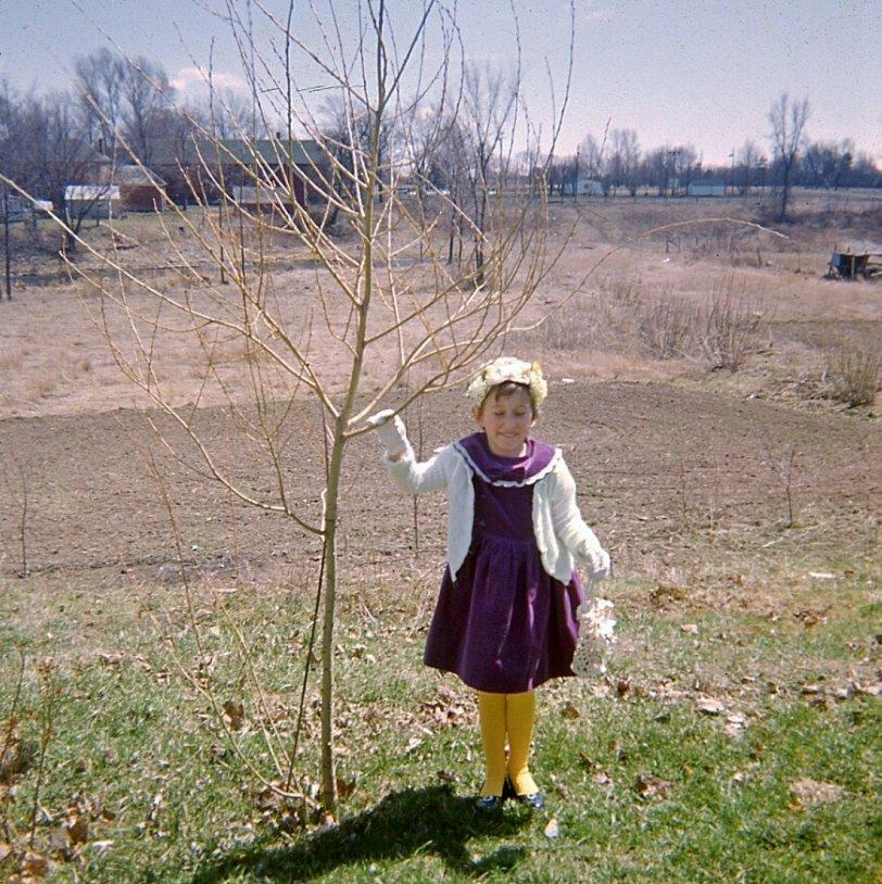 Easter Sunday, 1962, Kemptville, Ontario