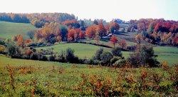 Backroads of Quebec