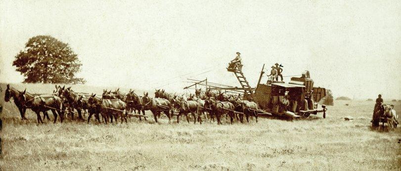 Jim's Harvester: 1905