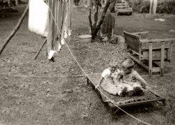 Kids and Doggie