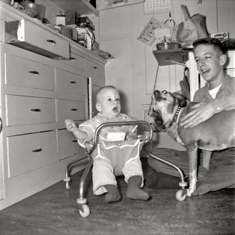 Pablum: 1960