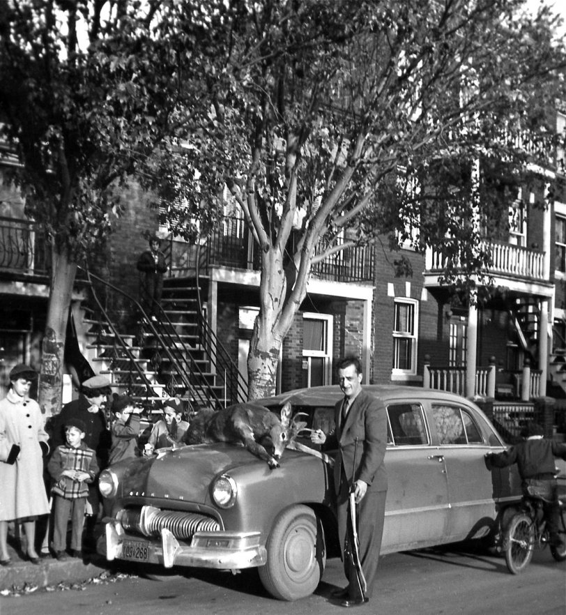 Montreal Hunter: 1954