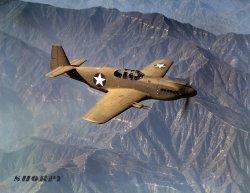 Mustang in Flight: 1942