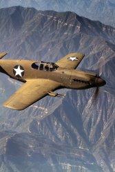 Mustang in Flight