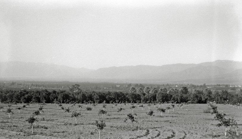 Redlands: 1927