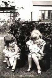 Baby Dolls, 1930