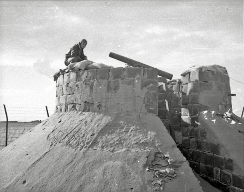 WW2: Big Gun