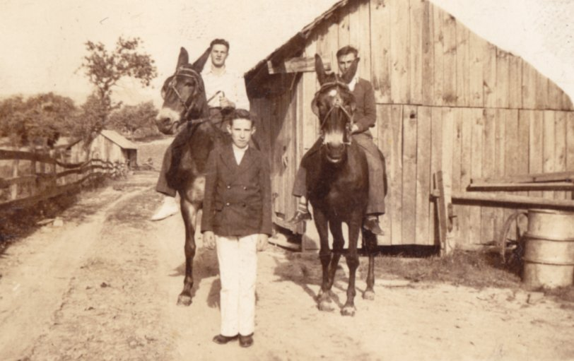 Strangers on Muleback