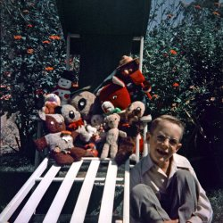 Teddy Bear Collection: 1953