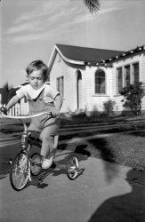 Junior Tricycle