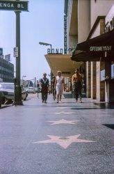 The Walk of Fame: 1965