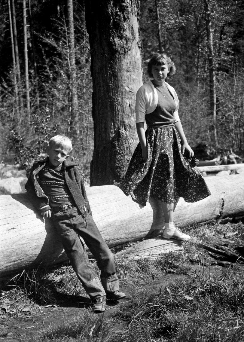 Yosemite: 1950s